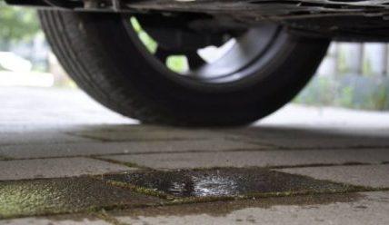 Двигатель ест масло, но не дымит: причины и рекомендации к действию